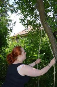 Seil um den Baum legen